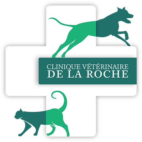 Logo de la Clinique vétérinaire de la Roche